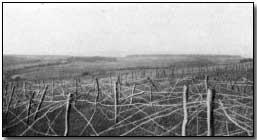 First world war battles the battle of verdun 1916 the starting point of the german attack north of haumont wood 21 feb 1916 publicscrutiny Choice Image