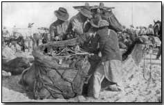British rations arriving by camel