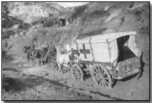 Horse-drawn ambulance at Helles