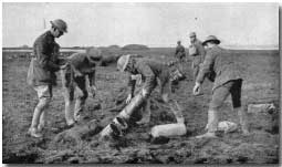 germany and the use of chemical warfare Research information: section  photographs that really showed what went on during world war i with the use of chemical warfare  brian germany's use of.